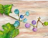 Berries watercolor painting original, Teal, Purple and Green Berries original watercolor painting, wood background