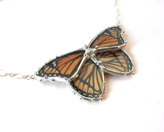 Real Butterfly Jewelry - The Orange and Black Viceroy Butterfly