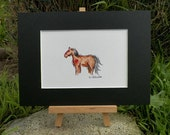 Indian Pony Southwestern Horse Watercolor Art Original Painting by Equine Artist debra alouise