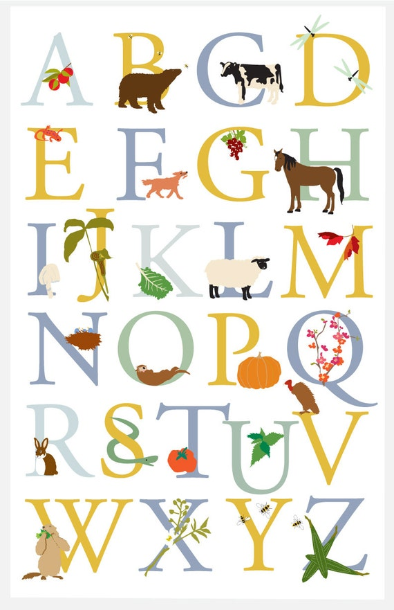 Alphabet Poster Vermont Animals And Plants Wild Cultivated 11