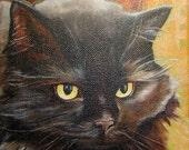 Custom Pet Portraits - Reserved for Kelli