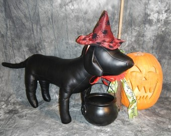 Red with black spiders dog witch hat, Halloween.