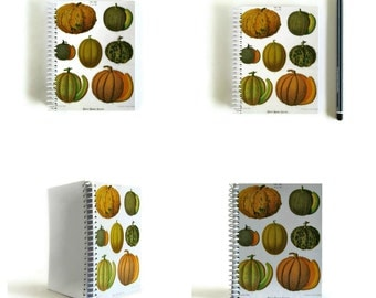 Pumpkins Recipes Book, Writing Journal, Back to School, Paper Goods, Gifts Under 15, Pocket, A6 Notebook, 4x6 Inches, Blank Sketchbook