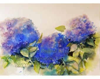 Hydrangea Flower Painting, Deep Blue Hydrangeas, Watercolor Flowers by Mary Hamilton, Floral Wall Decor, Original Painting