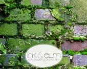 """Photography Backdrop 4ft x 3ft, Vinyl Photo backdrop, Antique Brick with Moss, Photo Prop, Floordrop, Mossy Brick, """"Mossy Mo"""""""