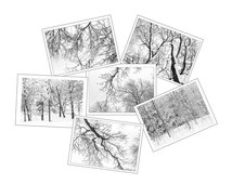 Six Christmas Cards, Holiday Card Set,  Winter Photo Cards,  New England Photography, Snow Photos