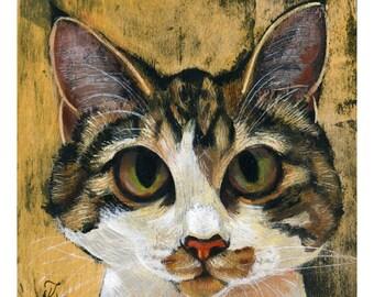Toph (Fine Art Print not a real Cat)