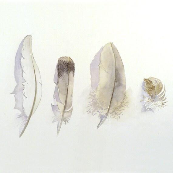 Art Painting Original Watercolor Bird Feathers Women Men Nature Woodlands Neutral Colors Nature White Grey Dorm 9.6 x 12.6 Under 70 USD