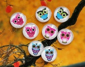 8pcs assorted colorful owls round clear glass dome cabochons 12mm (12-0297)