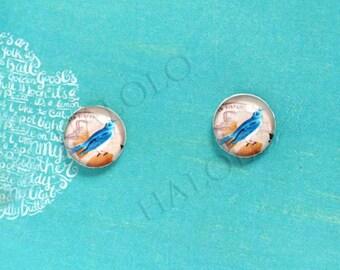 Sale - 10pcs handmade blue bird  clear glass dome cabochons 12mm (12-0619)