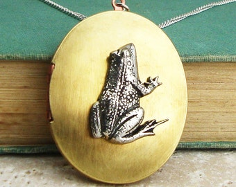 Frog Locket Necklace. Antiqued Silver Pewter and Vintage Brass Locket Necklace