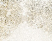 Winter photography, snow, wedding, rustic decor, white wedding, neutrals, snow photography, snow storm, forest, woodland