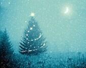 Winter decor, Christmas tree, fairy lights, snowy landscape, snowflakes, moon stars, Christmas eve, nature photo, holiday decorating
