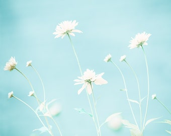 Nature photography, mint, pastel blue, summer decor, feminine, white flowers, baby blue, sunshine, airy, light, simple, neutral