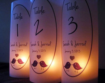 Wedding Table Number Luminaries, Love Birds, Wedding Decor
