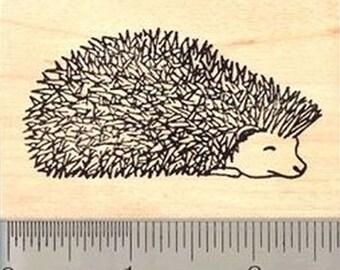 H-075 Prickly Hedgehog Rubber Stamp - Wood Mounted
