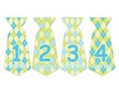 12 Pre-cut Monthly Baby Milestone Waterproof Glossy Stickers - Neck Tie Shape - Design T005-01