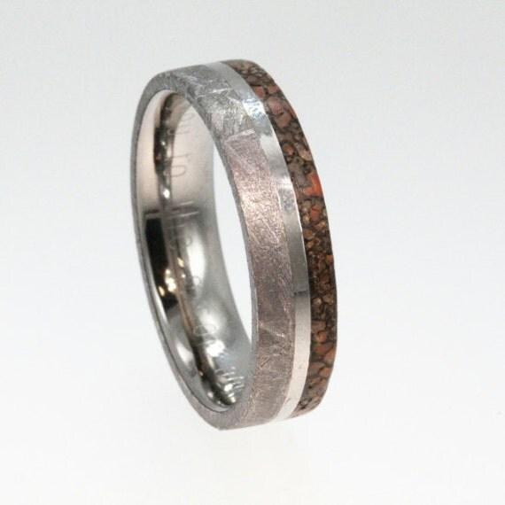 meteorite ring with dinosaur bone and titanium by
