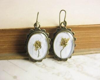 Yellow Flower Cluster Botanical specimen earrings - Brass or Niobium (hypoallergenic) Fish Hooks
