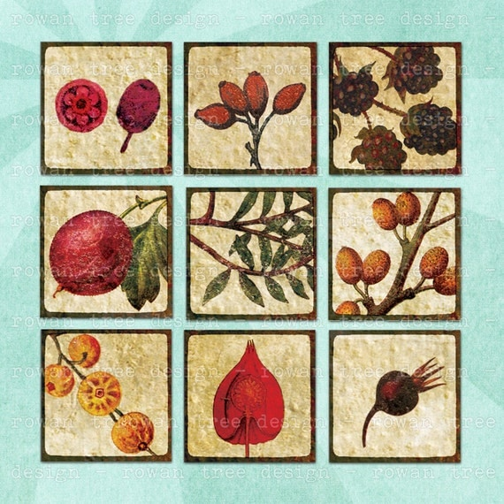 AUTUMN LEAVES & BERRIES Printable Collage Sheet 1in Squares Digital Download - no. 0013