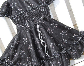 DRESS- Elegant Black with Silver and Pale Pink Embroidery  Size 4