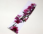 SALE - Meet the Robinson Crabapple Spring Blossoms Photo Bookmark