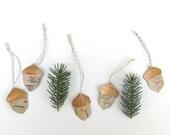 Birch bark ornaments, acorn set of 5, Acorns