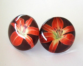 Daylily Jewelry Earrings: Ruby Red Spider Daylily Art Glass Button Studs