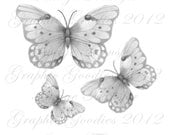 Butterfly Black and White Illustration Transfer Pillows Totes Tea Towels Wood Tile Glass