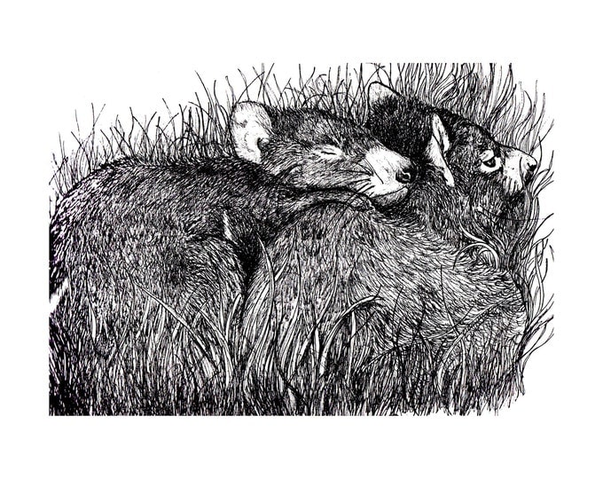 Two baby Tasmanian Devils on cotton black and white Fabric Panel Designed by Cindy Watkins