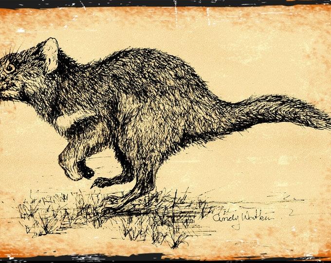 Tasmanian Devil on cotton black and tan Fabric Panel Designed by Cindy Watkins