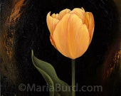 Georgette Tulip - Original Oil Painting on Wood 8x8