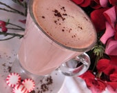 Gourmet Peppermint Hot Cocoa Mix (Small)