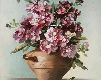 Huge Discount, Art Print, Butterfly, Bee, Catherine Klein, CP85