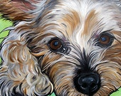 YORKIE YORKSHIRE TERRIER dog art print green bright colors 5x7