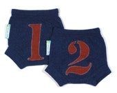 """WOOL SOAKER - Wool Diaper Covers - """"Things 1 and 2"""" - X-Small Newborn"""