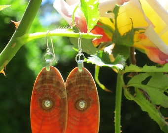 Diamonds In Monkey Puzzle Ultimately Awesome Earrings