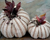 Two cream and brown Pumpkins Gourds Ecofriendly Halloween Thanksgiving Home Decor (woolcrazy)