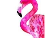 Flamingo, 50x70 cm (19,7x27,5 inch)