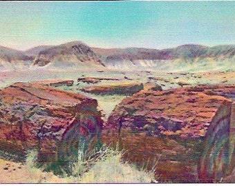 1930s 40s Vintage Linen Postcard, Petrified Forest, Arizona