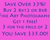 Save Over 33 percent - Buy Two 8x12 or 8x8 Fine Art Photographs and get your 3rd FREE