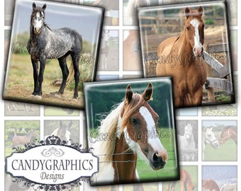 Horses 2 Scrabble size - Digital Collage Sheet - .75 x .83 inch great for scrabble tile pendants - Buy 2 Get One FREE