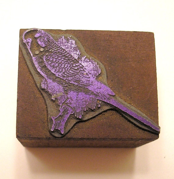 Bird Parakeet Vintage Letterpress Printer's Block