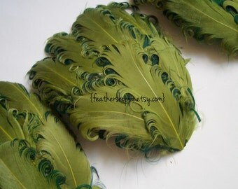 CLEARANCE - Imperfect Lime on Hunter Curled Goose Pads - 2.75 ea
