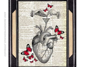 ANATOMICAL HEART anatomy chemistry love wedding anniversary cardiologist Happiness art print wall decor on vintage dictionary book page 8x10
