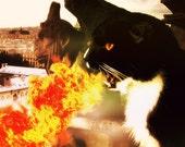 Black Cat Art, Dragon Breathing Fire Gargoyle Notre Dame Fantasy Art 8x10 Print