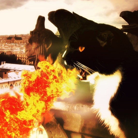 Black Cat Art, Dragon Breathing Fire Gargoyle Notre Dame Fantasy Art 8x10 Print