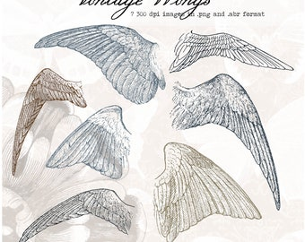 Vintage Wings, digital clip art and photoshop brushes: Commercial and Personal Use