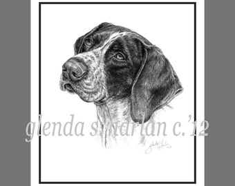 German Shorthair Pointer Fine Art Note Cards - set of Four