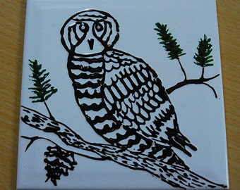 "Ceramic Wall Tile, Hand Painted Owl, Wall Hanging Tile,  Kitchen Back Splash, Wymsical Ceramic Tile, Wall Hanging, Raised Glaze, 6"" Square"